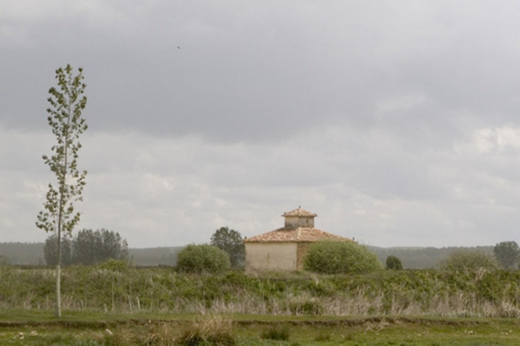 Palomar Santillan