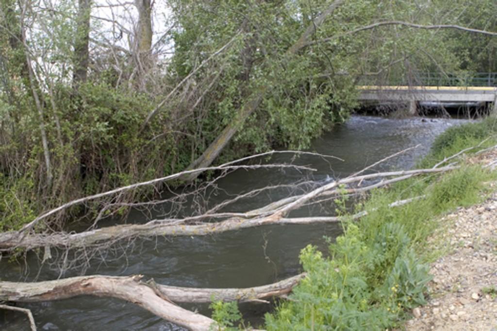 Puente Albala